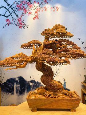 Tiểu cảnh gốc cây tùng bằng gỗ hương đẹp