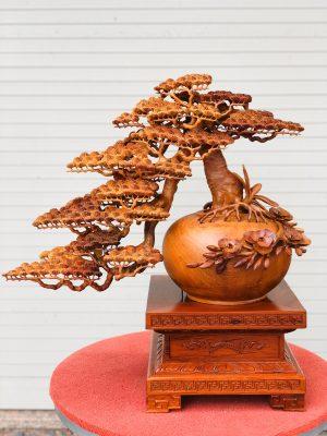 Bình tùng bonsai gỗ hương