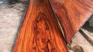 Gỗ Trắc là gỗ gì? Có những loại gỗ Trắc nào trên thị trường?